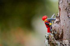 BLOG | Dame Esos Cinco Estudio | Servicios audiovisuales Legos, Garden Tools, Bird, Animals, Feelings, Studio, Girls, Lego, Animales