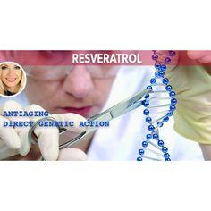 Cel mai puternic antioxidant natural Genetics, Metabolism, Natural, Varicose Veins, Nature, Au Natural