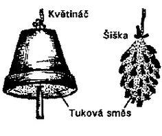 ČSO-Česká společnost ornitologická Decorative Bells, Home Decor, Homemade Home Decor, Interior Design, Home Interiors, Decoration Home, Home Decoration, Home Improvement