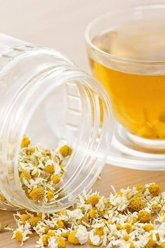 Glenbrook Farms sells herbs and spices, fine teas and coffees, essential oils, herbal soaps and herbal remedies for humans and horses.  We also manufacture salves, soaps, bath salts and sell crafting supplies.  We are located in Kentucky