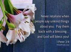 Never retaliate when people say unkind things about you. Pay them back with a blessing. & God will bless you. Creator Of The Universe, The Creator, New Testament Books, 1 Peter 3, Revelation 22, Wonderful Counselor, Jesus Resurrection, Bible Truth, Believe In God