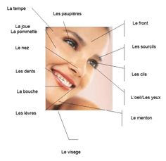 vocabulaire #visage
