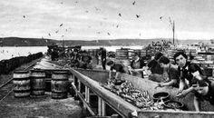 Old photograph of Lerwick, Shetland Islands, Scotland