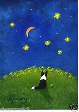BORDER COLLIE Dog Moon Abstract Outsider Folk Art PRINT Todd Young STAR GAZER