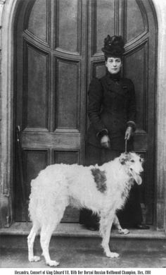 Alexandra, Consort of King Edward VII of Great Britain. The date of the original photograph is Jan. 30, 1901 just 8 days after the death of Edward's mother, Queen Victoria. Alexandra is dressed in mourning and is with Alex, her Champion Borzoi Russian Wolfhound.