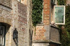 Art photography of dog in Bruges Belgium known as by nancyhehmann, $30.00