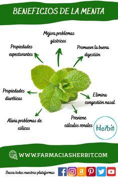 Mind Body Soul, Super Natural, Food Humor, Medicinal Plants, Natural Medicine, Planting Flowers, Herbalism, Healing, Herbs