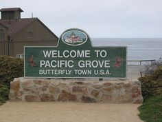 In Pacific Grove there is a law on the books establishing a $500 fine for molesting butterflies.
