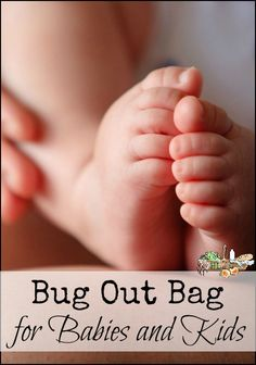 Bug Out Bag for Babies and Kids l Beyond the basics of baby care in a 72 Hour Kit l Homestead Lady (.com)