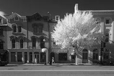 Cotton Ball - Walking along M Street in Georgetown, Washington, DC Washington Dc, Georgetown Washington, Infrared Photography, Photography Series, Street View, Urban, Architecture, Building, Travel
