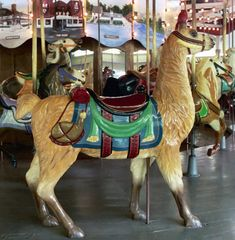 The Conneaut Lake Park Carousel Carousel Works Llama Outside Row Stander