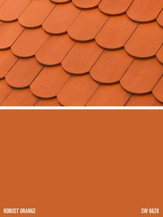Sherwin Williams Paint Color Robust Orange Sw 6628 Pinned By Conceptcaninteriors