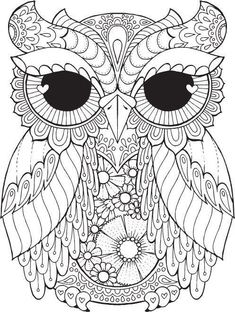Сова раскраска (497×659)
