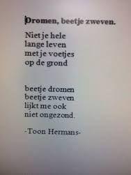 toon hermans korte gedichten