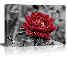 """Wall26 - Canvas Prints Wall Art - Red Rose on Grey 