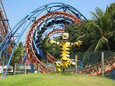 Image result for mgm roller coaster