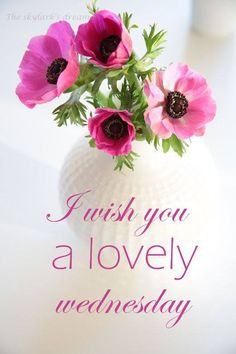 Have a lovely Wednesday!