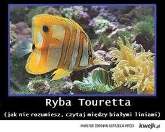 tourette's fish