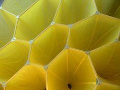 #Honeycomb #grid #pattern