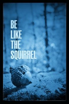 Be like the squirrel girl!