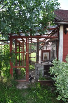 A simply built great cat run that looks highly doable :) catio Outdoor Cat Run, Cats Outside, Outdoor Cat Enclosure, Living With Cats, D House, Cat Garden, Cat Room, Cat Condo, Space Cat