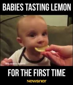 funny baby pictures with dad Funny Baby Memes, Funny Video Memes, Stupid Funny Memes, Hilarious, Baby Humor, Funny Stuff, Funny Videos For Kids, Cute Baby Videos, Funny Short Videos