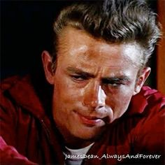 Rebel Without a Cause. #jamesdean #rebelwithoutacause #classicmovies #oldhollywood #foreveryoung #classichollywood #borncool #cute #icon #love #vintage #1950s #50s #americanicon #legendsneverdie #legend