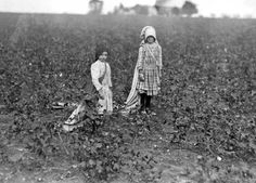 History in Photos: Lewis Hine - Farm Work Old Photos, Vintage Photos, Orphan Train, Lewis Hine, Research Images, American Children, Texas History, History Photos, Industrial Revolution