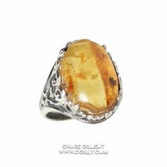 Amber w/ Fossil Flying Gnat Sterling Silver Ring by Chase Gilbert @ cgilly.com