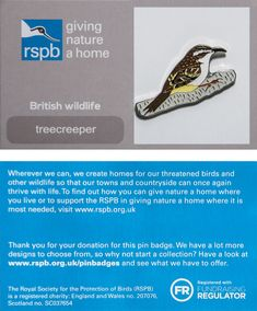 £3 GBP - Rspb Pin Badge | Treecreeper | Gnah Backing Card [00599] #ebay #Collectibles British Wildlife, Our Town, Pin Badges, Live For Yourself, Countryside, How To Find Out, Jewellery, Ebay, Jewels