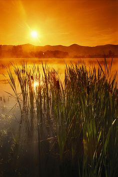 Sunrise Over A Misty Pond by Richard Nowit*