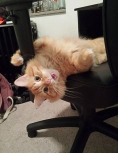 Sitting_In_My_Chair