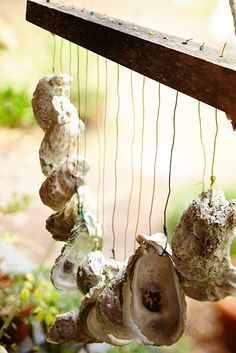 An oyster shell wind chime. #SouthernHomes #gardenandgun Photo Credit: Brie Williams.