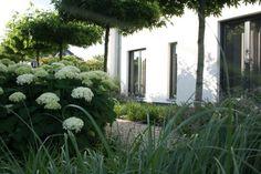 voorbeeldtuin-villatuin-voortuin-plantenborder-leibomen-tuinaanleg-eindhoven-helmond-nuenen