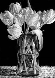 Nine Tulips By Sandra Willard Scratchboard ArtScratch