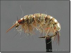 Tan Scud - A fly made to imitate a freshwater shrimp. Works incredible on the bighorn and other rivers with lots of vegetation on the bottom and of course that have shrimp.