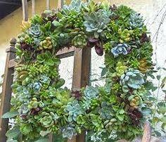 Bildergebnis für dekorieren mit sukkulenten