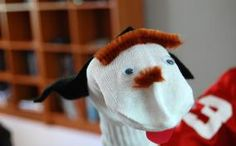 The sock puppet