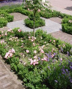 voortuin romantisch rozen rivius buxushaagje tuinontwerp Garden Inspiration, Plants, Sidewalk, Stepping Stones, Outdoor, Outdoor Decor, Romantic Garden