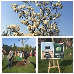 Great event with Yves Rocher- let's plant the trees for the planet