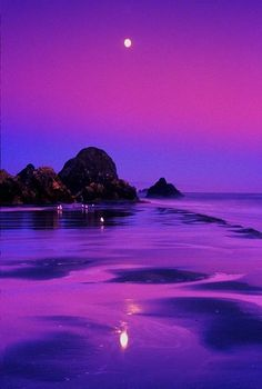 Purple Moment pretty colours... I have never seen anything like this - but I would imagine for us purple lovers... it would be heaven!
