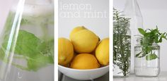 Lemon & Mint // Sania Pell
