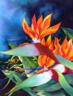 Floral - Nancy Collins Art