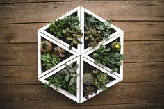 DIY Modular Planters