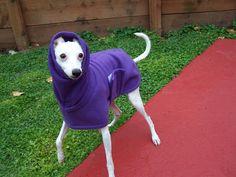 "Reserve Listing for Rachel Whippet English Style Dark Lilac Fleece Dog Coat Size 24"". $22.50, via Etsy."