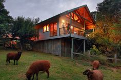 The Treehouse Cottage is nestled among rainforest trees and affords an expansive outlook. It is very romantic with a fireplace and four poster bed. It also has a second bedroom, balcony, bird...