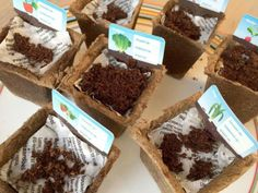 What can you do with your Albert Heijn vegetable garden, and what should you actually do with the . Gardening For Beginners, Gardening Tips, Planting Flowers, Planting Seeds, Square Foot Gardening, Garden Markers, Do It Yourself Projects, Outdoor Plants, Get Outside