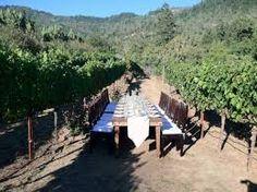 calistoga ranch vineyard ceremony - Google Search Calistoga Ranch, Outdoor Furniture Sets, Outdoor Decor, Wedding Designs, Vineyard, Dolores Park, Table Decorations, Design Ideas, Google Search