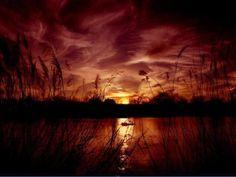 Beautiful Sunset - beautiful-nature Photo