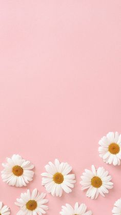 aesthetic wallpaper pastel 36 Ideas Wallpaper Iphone Bloqueo Cute For 2019 Beste Iphone Wallpaper, Iphone Background Wallpaper, Mobile Wallpaper, Iphone Wallpapers, Pastel Pink Wallpaper Iphone, Spring Wallpaper, Daisy Background, Pink Wallpaper Backgrounds, Colorful Wallpaper